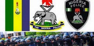 Complete List Of New Nigeria Police Salary Structure