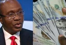CBN Gives Strict Rules On Transfer Of FX Cash Into Domiciliary Account